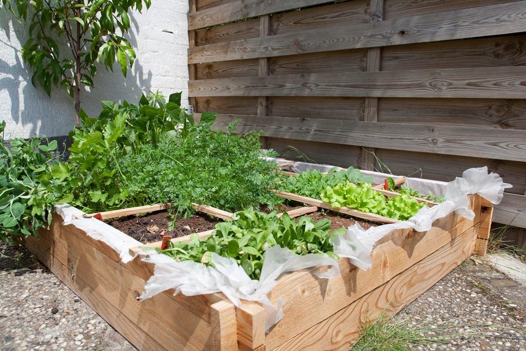 Vierkante Meter Tuin : Les tuinieren planit